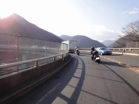 2011-2-26 河津桜0069