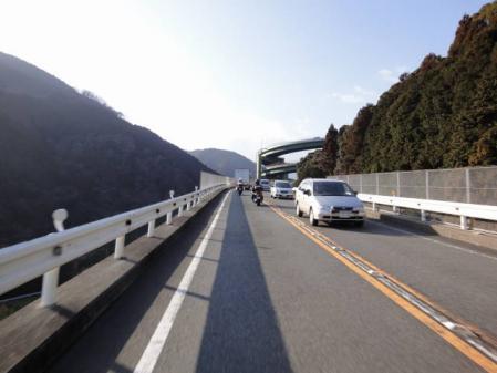 2011-2-26 河津桜0063