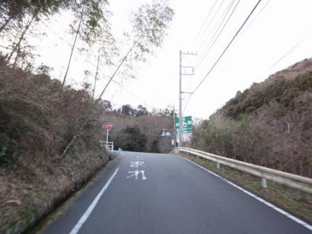 2011-2-26 河津桜0077