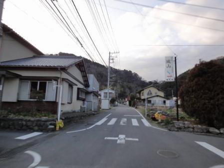 2011-2-26 河津桜0076