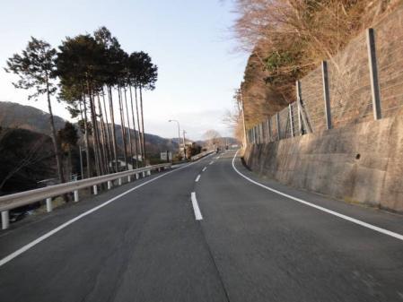 2011-2-26 河津桜0071
