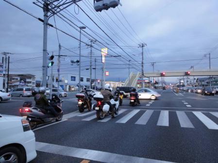 2011-2-26 河津桜0088