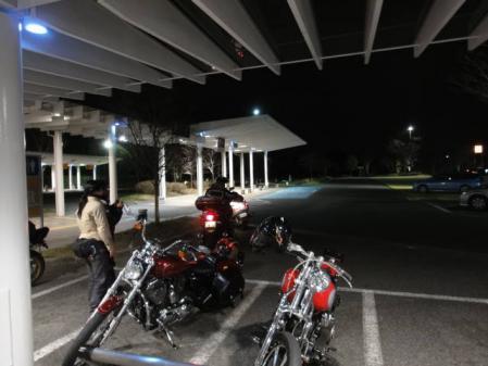 2011-2-26 河津桜0094