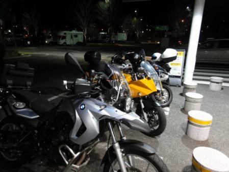 2011-2-26 河津桜0093