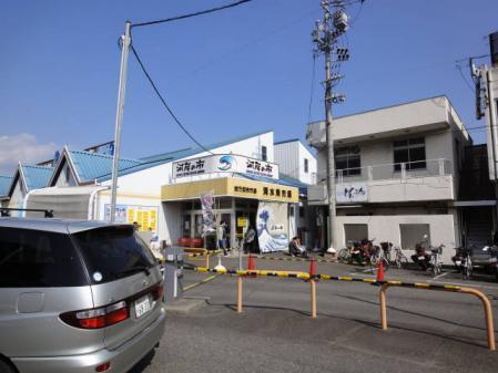 2011-2-27 河津桜0017