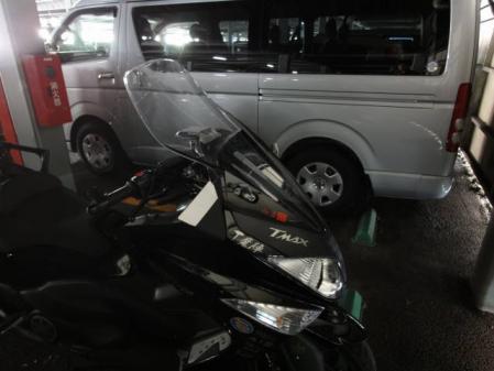 2011-2-27 河津桜0002