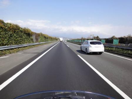 2011-2-27 河津桜0020