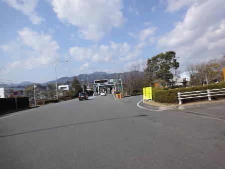 2011-2-27 河津桜0018