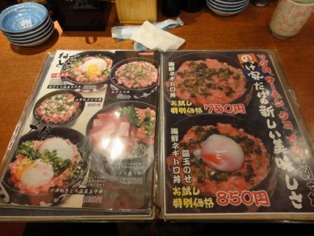 2011-2-27 河津桜0012