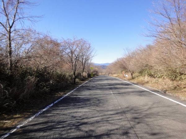 富士山0016