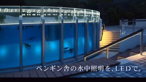 tokusima_zoo-01.jpg