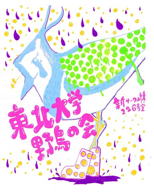 野鳥の会新勧ビラ(カラー)50