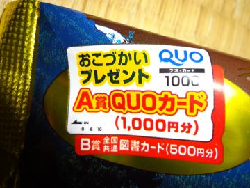 DSC00050_convert_20110220124554.jpg