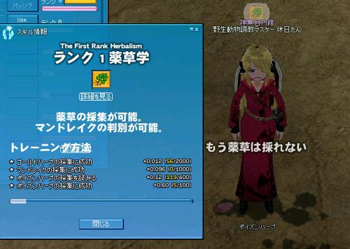 mabinogi_2011_11_27_002.jpg