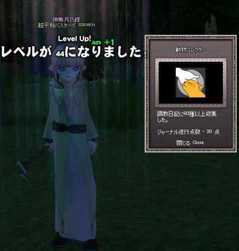 mabinogi_2011_12_02_006.jpg