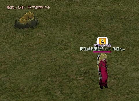 mabinogi_2011_12_04_002.jpg