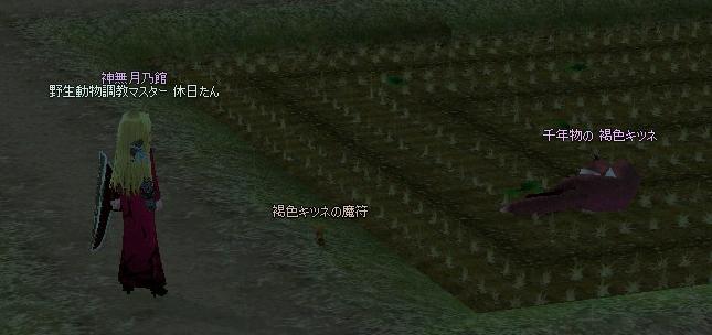 mabinogi_2011_12_05_017.jpg