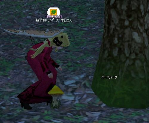 mabinogi_2011_12_14_002.jpg