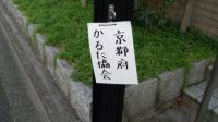 京都かるた協会