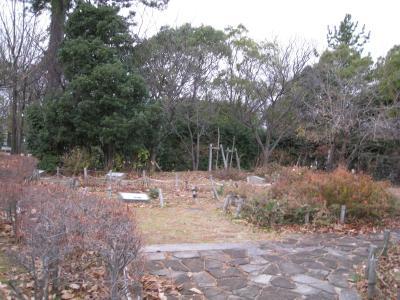 kisei-12-30-11.jpg