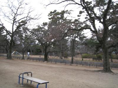 kisei-12-30-5.jpg