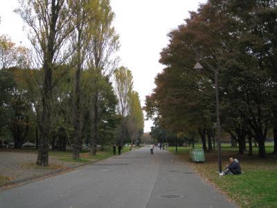 mizumoto11-21-7.jpg