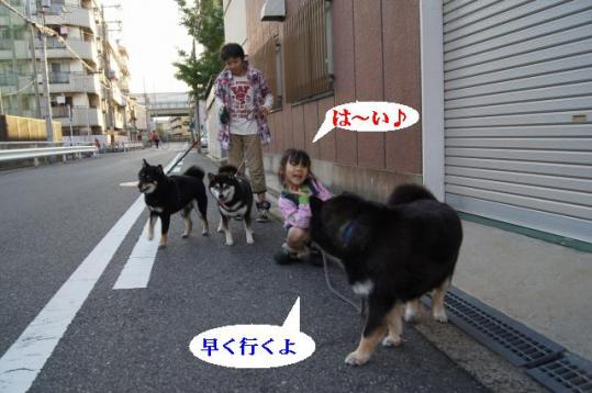 DSC07713.jpg