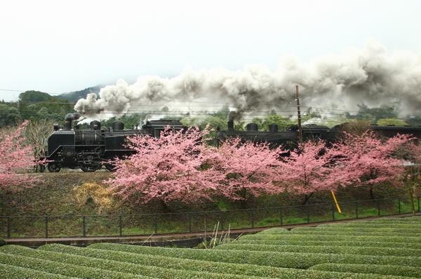 1203大井川鉄道① (212)加工FC2