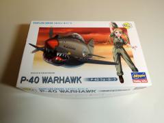 P-40001