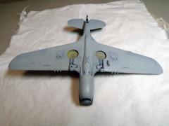 P-40E021.jpg