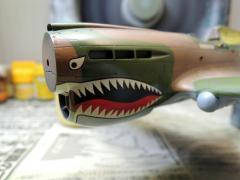 P-40E030.jpg