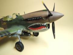 P-40E041.jpg