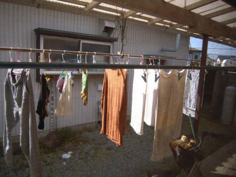 強い日差し テラスにて 洗濯物が 踊りだす 俳句ポエム