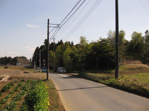 成井一里塚と水戸街道