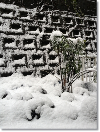 2013-01-14-02.jpg