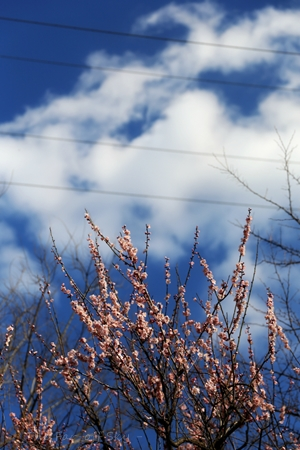 2013-02-20-03.jpg