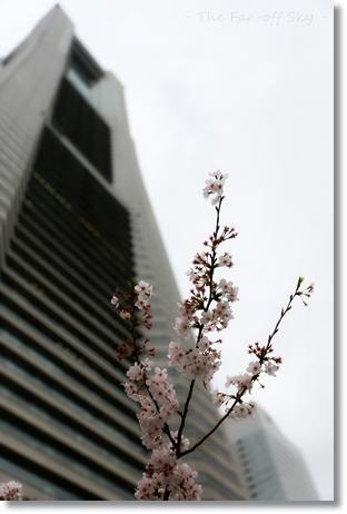2013-03-31-01.jpg