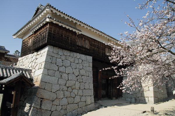 MatsuyamaC01