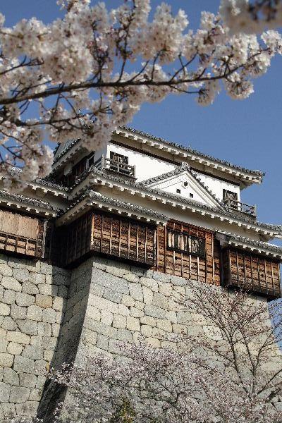 MatsuyamaC04