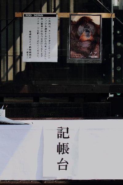 TobeZoo Nobu Death 111009 003