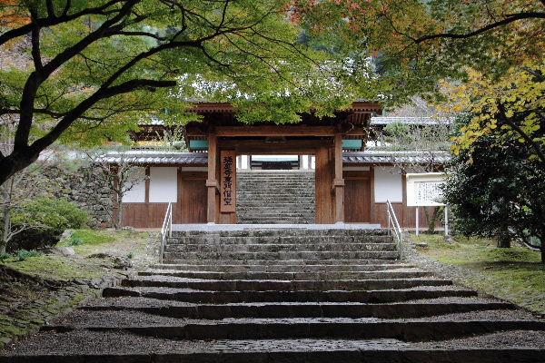 Zuiouji01