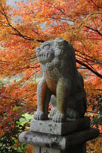 TamagawaFall05