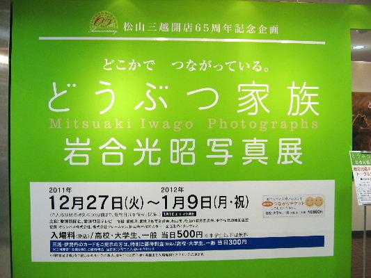 IwagouP02