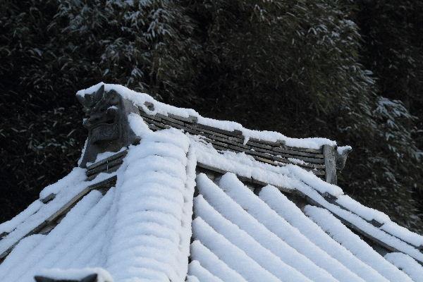 浄土寺雪景色 120203 024