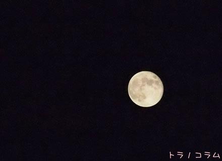 中秋の名月の次の日の月