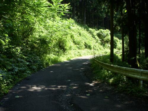 三登山林道