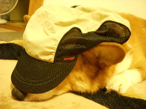 トム 帽子