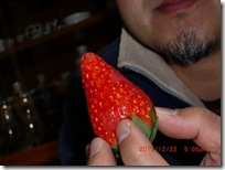 ichigo017-20121223