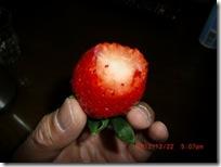 ichigo030-20121223