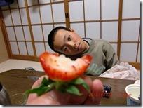 ichigo037-20121223